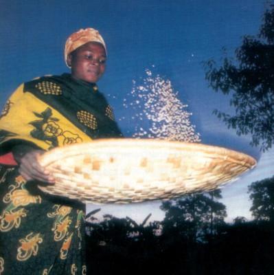 (Kafferöstare, foto: El Puente - Die Fair Trade Pioniere)