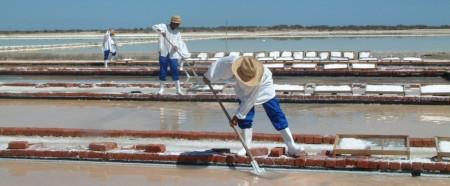 Khoisan havssalt utvinns för hand från underjordiskt havsvatten vid Sydafrikas västkust. Fair Trade-gourmetsalt