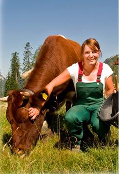 Kvinna med mjölkko från Milchwerke Berchtesgadener Land, Tyskland.