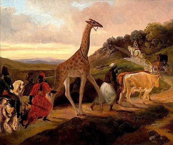 Le Passage de la girafe près d'Arnay-le-Duc, Jacques Raymond Brascassat (1827)