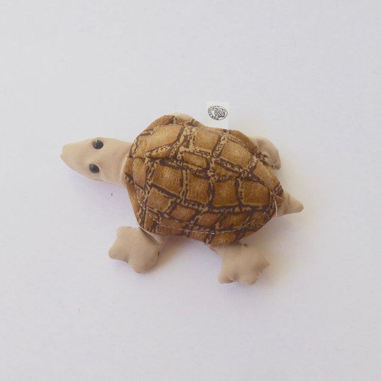 Sanddjur Sköldpadda, brun, liten