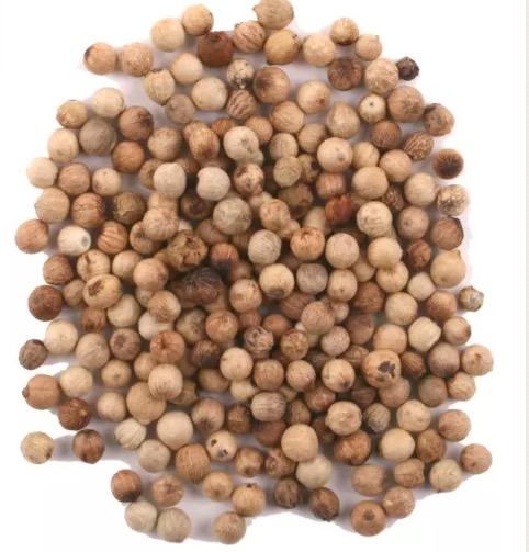 Vitpeppar hela korn, refill, ekologisk och Fair Trade från Sri Lanka. Bild på korn.