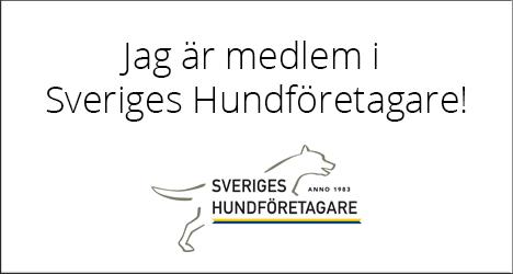 https://hitta.sverigeshundforetagare.se/hundforetag/99