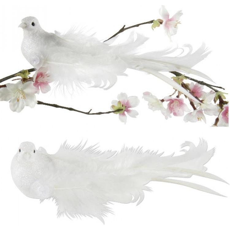 Vit glittrande fågel med långa fjädrar