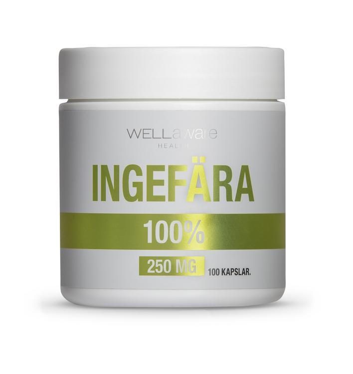 WellAware Ingefärakapslar - 120 st 250 mg