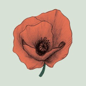 Frida Clerhage  logo
