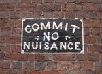 Statutory nuisance and the Environmental Protection Act 1990: disrepair with a difference