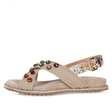 Jewel Sandal with Buckle