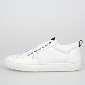Leather WILLY Sneakers