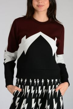Cropped THUNDERBOLT Sweatshirt