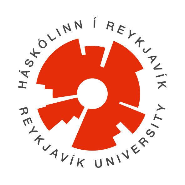 Tæknimaður á upplýsingatæknisviði