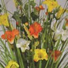 Grass Floral Bundle Morning Glory 100cm