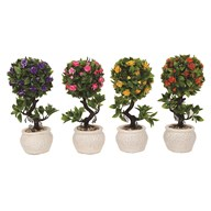 Embossed Pot Topiary Trees 27cm 4 Assorted