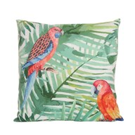 Parrott Design Cushion 45cm