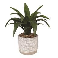 Succulent Plant Decor Pot 42cm