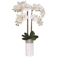 Orchid Marble Effect Pot 85cm