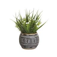 White Floral Plant in Black Pot 27cm