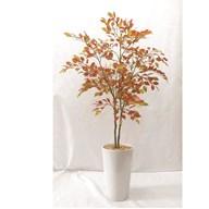 Copper Ficus Tree In Pot 111cm