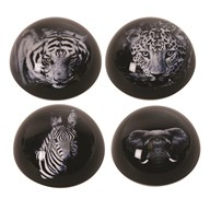 Animal Paperweight 4 Assorted 8cm