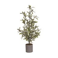 Berry Potted Tree Green 60cm