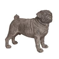 Standing Pug Dog 20.5cm