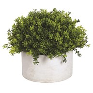 Green Topiary Grey Pot 26x23cm