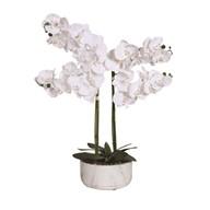 Orchid Pot White 68cm