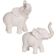 White Elephant 2 Assorted 24cm