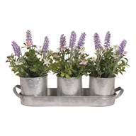 Floral In Decorative Pots On Tray 37cm