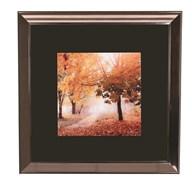 Framed Prints Art  70cm Autumn Stroll