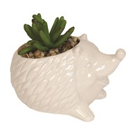 Artificial Succulent in Hedgehog Pot 11.5cm