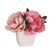 Peony Decorative Pot Pink 14cm