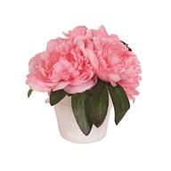 Peony Decorative Pot Pink 19cm
