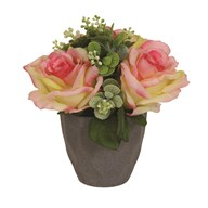 Rose Decorative Pot Pink 22cm