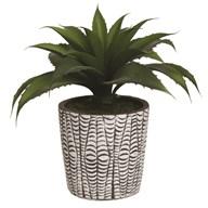 Succulent Decorative Pot 25cm