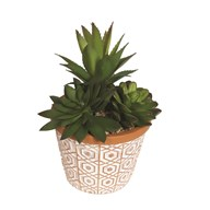 Succulent Decorative Pot 18cm
