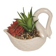 Artificial Succulent in Swan Pot 11cm