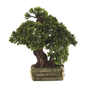Bonsai Tree 30cm