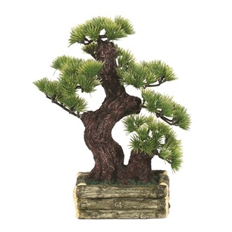 Bonsai Tree 28cm