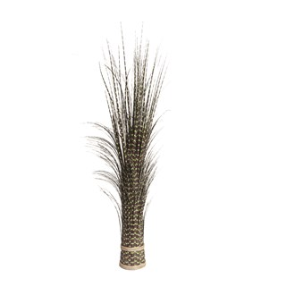 Zebra Grass Bundle 100cm