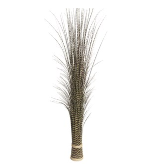 Zebra Grass Bundle 140cm