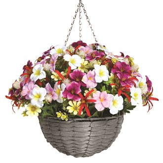 Floral Hanging Basket White and Pink Narcissus