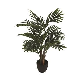 Areca Palm Tree 70cm