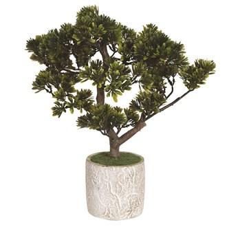 Bonsai Tree In Pot 42cm
