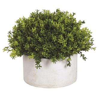 Green Topiary Grey Pot 26x23cm