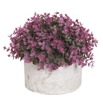 Purple Topiary Grey Pot 26x23cm