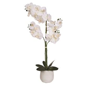Orchid Pot White 60cm