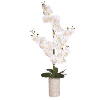 Orchid Pot White 80cm
