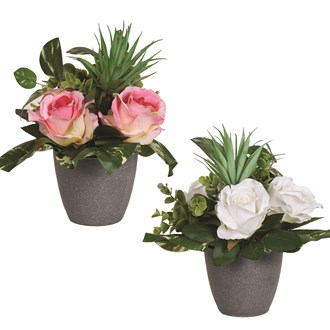 Decorative Rose in Pot 26cm 2 Assorted