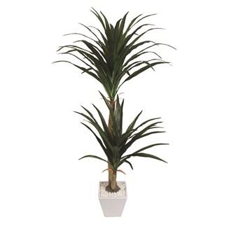 Dracaena Tree in Pot 116cm